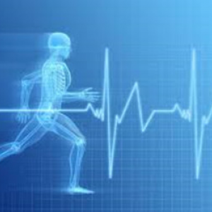 ciclo Actividad fisica