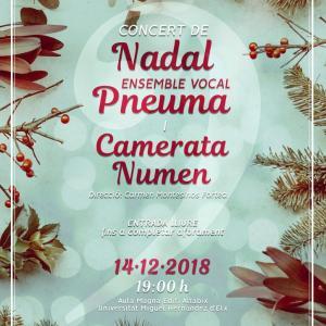 Concierto de Navidad Ensemble Vocal Pneuma y la Camerata Numen