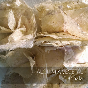 """Alquimia vegetal. Pilar Sala"""
