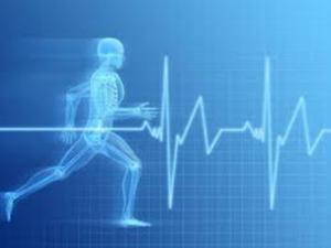 Ciclo Actividad Física y Deporte