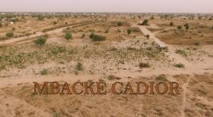 Mbacke Cadior. Work in progress